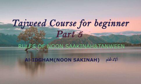 Al-IDGHAM(NOON SAKINAH)