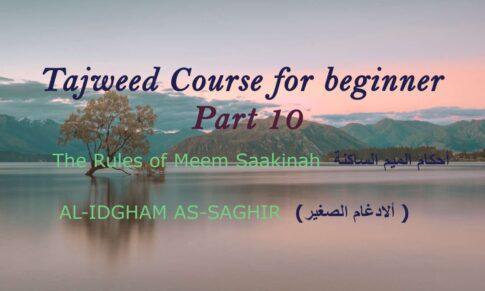 AL-IDGHAM AS-SAGHIR