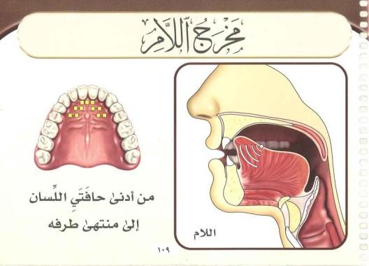 Lam sakinah rules